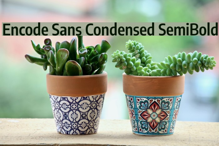 Encode Sans Condensed SemiBold Font examples