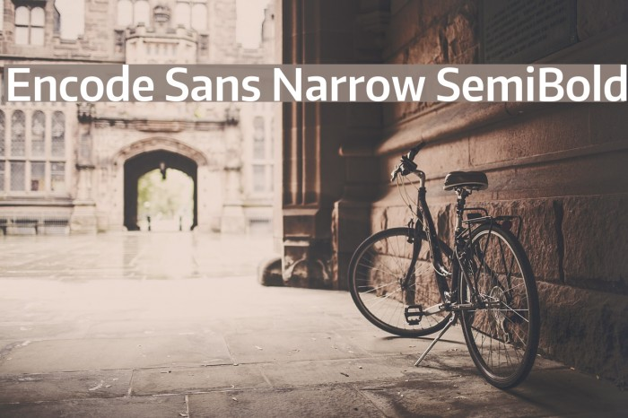 Encode Sans Narrow SemiBold Font examples