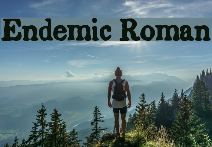 Endemic Roman Font examples