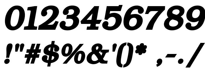 ER Bukinist 866 Bold Italic फ़ॉन्ट अन्य घर का काम