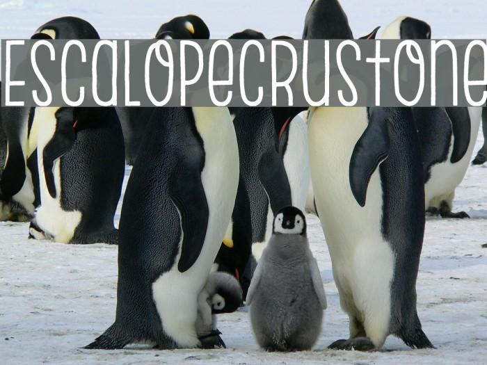 EscalopeCrustOne Шрифта examples
