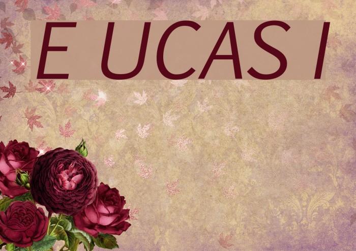 Euphemia UCAS Italic Font examples