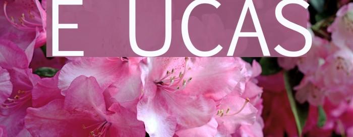 Euphemia UCAS Font examples