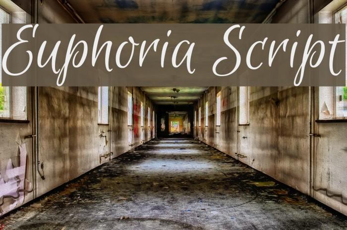 Euphoria Script Font examples