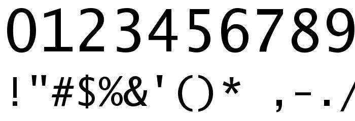 Excalibur Monospace Font OTHER CHARS