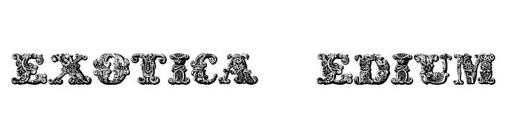 exotica Medium  لخطوط تنزيل