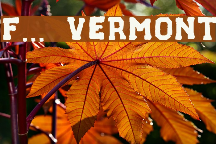 F... VERMONT Font examples