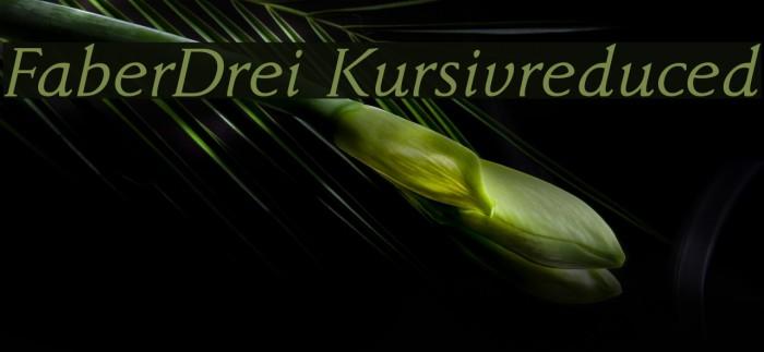 FaberDrei-Kursivreduced Font examples