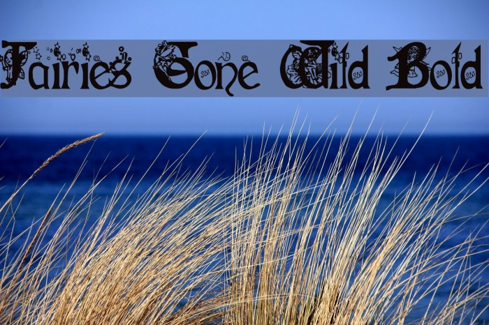 Fairies Gone Wild Bold Fonte examples