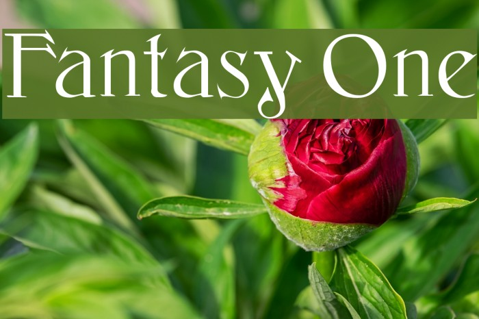 Fantasy One Font examples