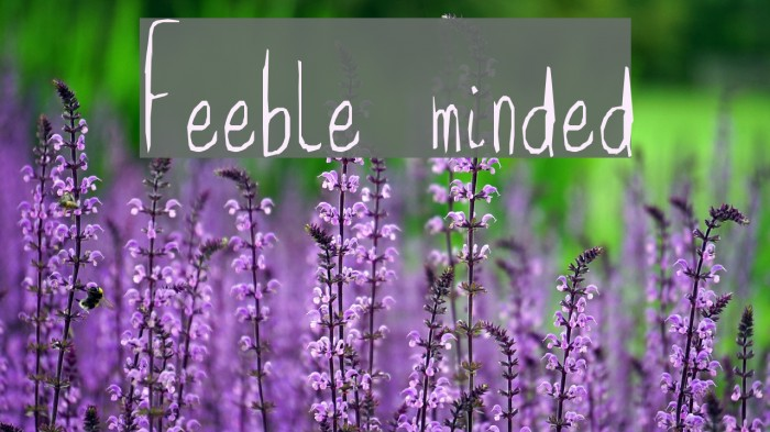 Feeble minded Font examples