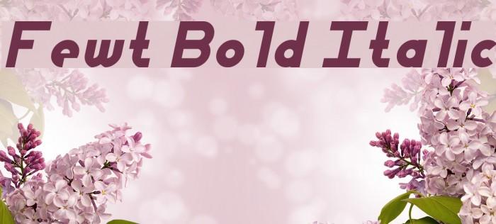 Fewt Bold Italic Шрифта examples