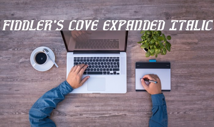 Fiddler's Cove Expanded Italic Font examples