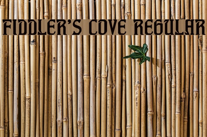 Fiddler's Cove Regular Font examples