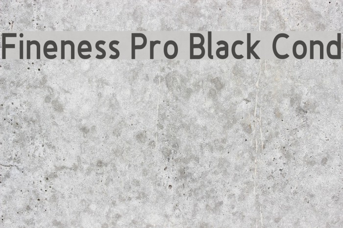 Fineness Pro Black Cond Fuentes examples