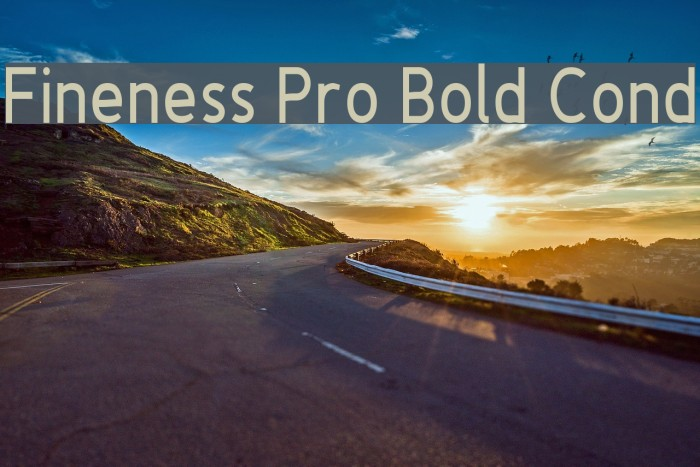 Fineness Pro Bold Cond फ़ॉन्ट examples