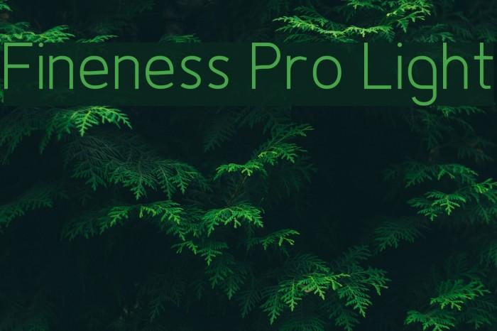Fineness Pro Light फ़ॉन्ट examples