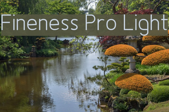 Fineness Pro Light Fuentes examples