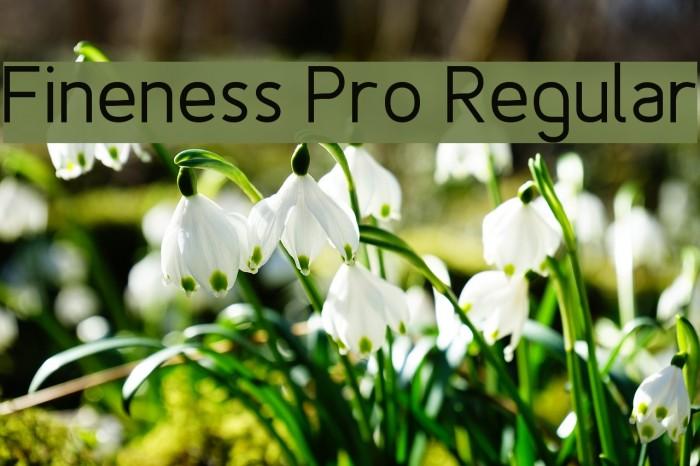 Fineness Pro Regular Fuentes examples