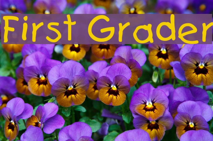 First Grader Font examples