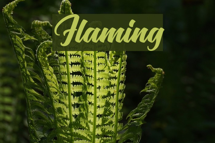 Flaming Font examples