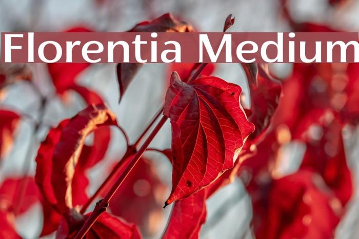 Florentia Medium Font examples