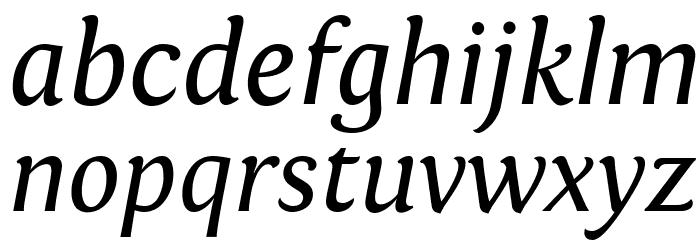 Fontin Italic Font Litere mici