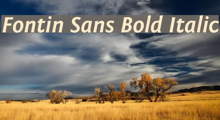 Fontin Sans Bold Italic Font examples