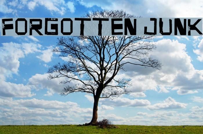 Forgotten Junk Fonte examples