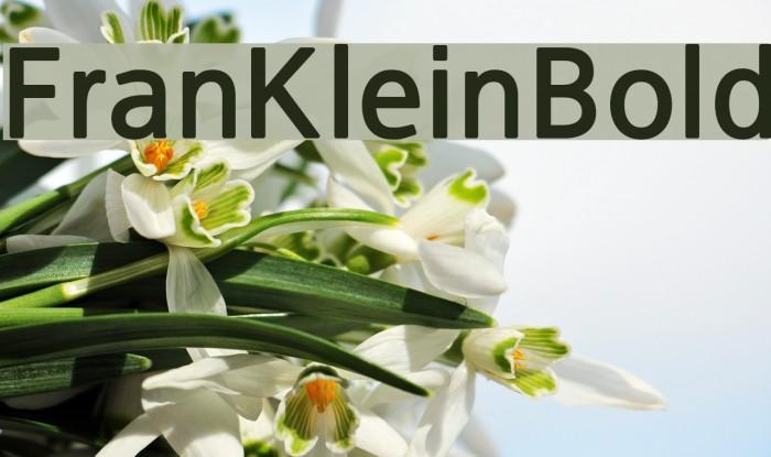 FranKleinBold Font examples