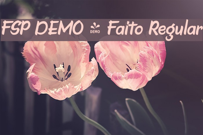 FSP DEMO - Faito Regular Font examples