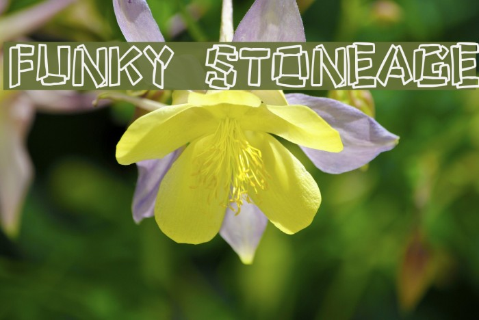 Funky Stoneage Шрифта examples