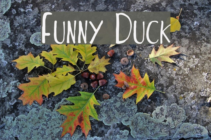 Funny Duck फ़ॉन्ट examples