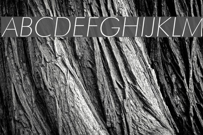 Futura Thin Italic Шрифта examples