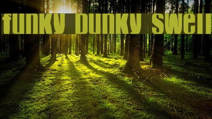 funky dunky swell 字体 examples
