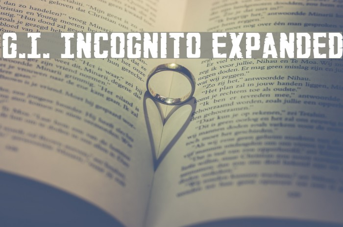 G.I. Incognito Expanded Fonte examples