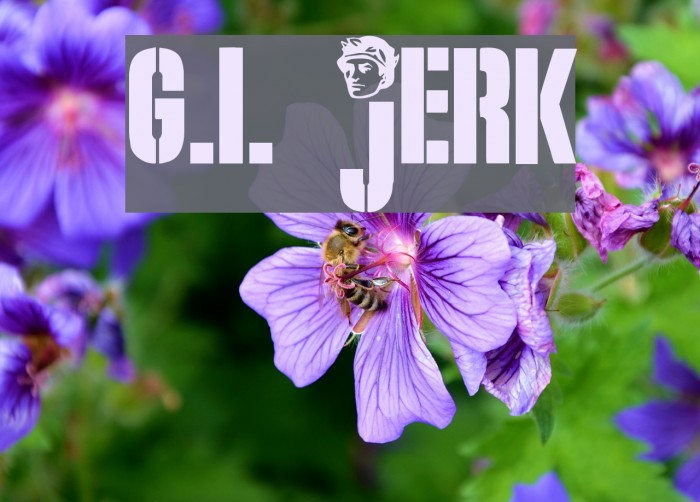 G.I. JERK Font examples
