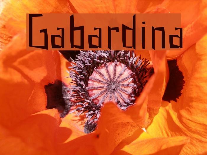 Gabardina Font examples