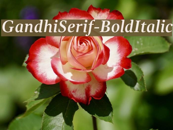 GandhiSerif-BoldItalic 字体 examples