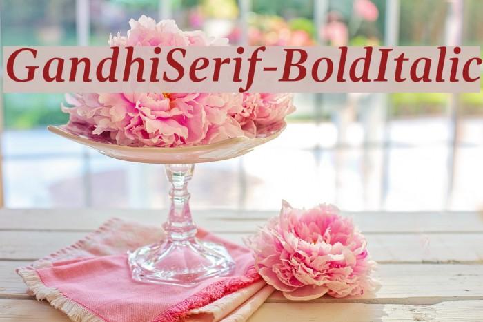 GandhiSerif-BoldItalic Caratteri examples