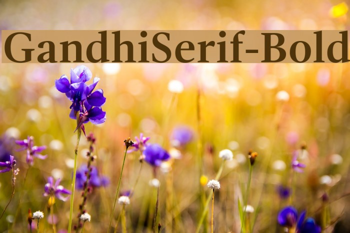 GandhiSerif-Bold フォント examples