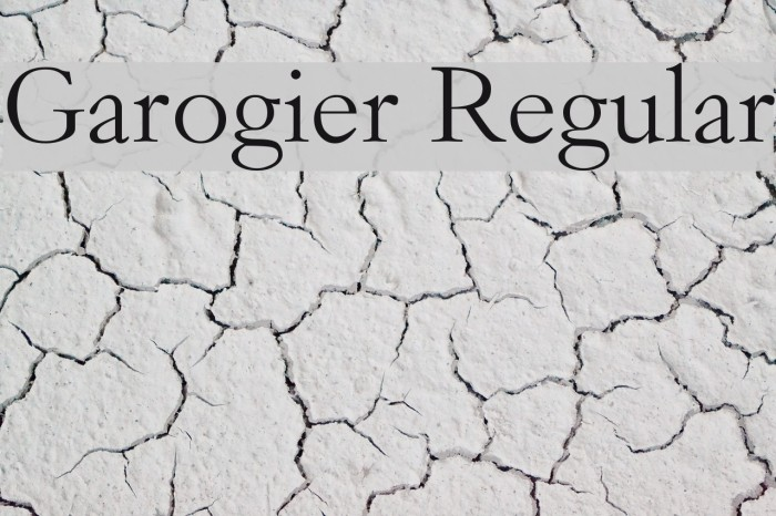 Garogier Regular Font examples
