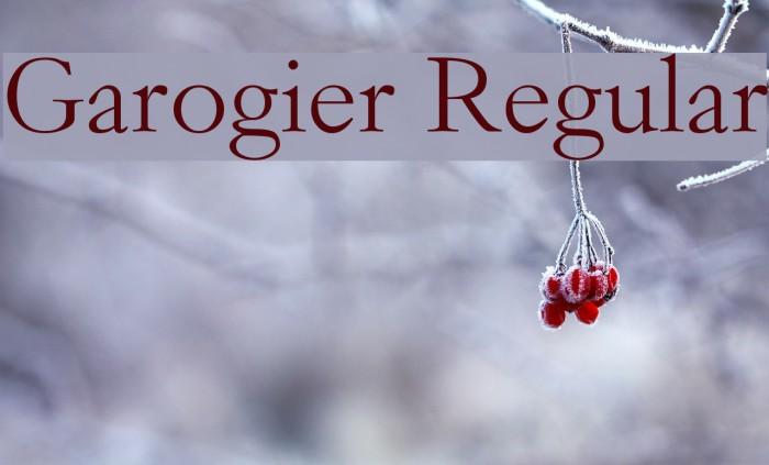 Garogier Regular Polices examples