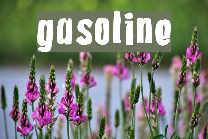 Gasoline Шрифта examples