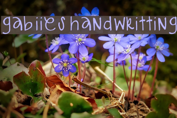 gabiies handwritting Fonte examples