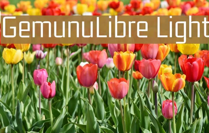 GemunuLibre Light Fuentes examples