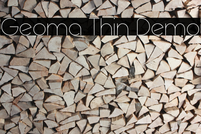 Geoma Thin Demo Polices examples