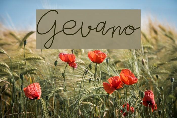 Gevano फ़ॉन्ट examples