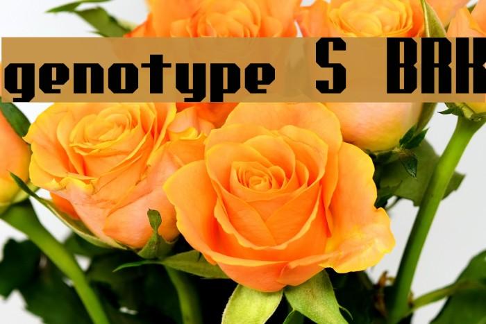 genotype S BRK Font examples