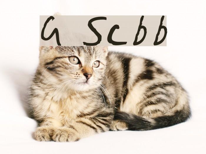 Gimp Scribble Font examples